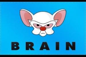 Brain Flag