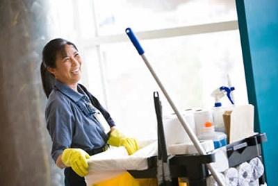 Bred For Housework
